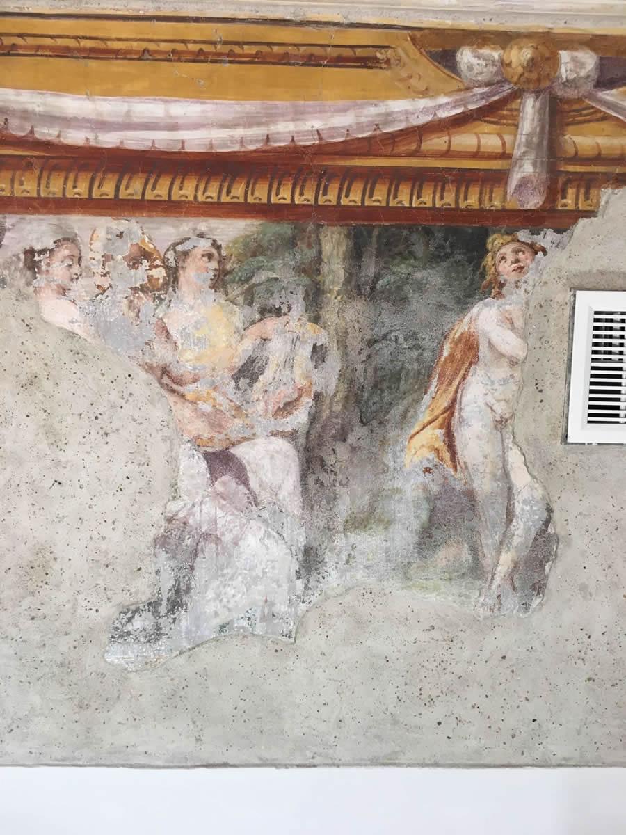 affreschi-palazzo-mignanelli_3363